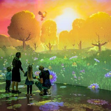 PIXERA Key to Belgium's First Immersive AV Attraction